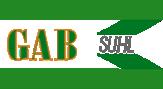Logo von Grünanlagen- und Sportplatzbau GmbH Suhl